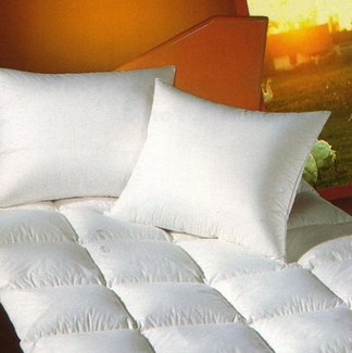 Pacific Coast Down Surround Pillow Found in Many Howard Johnson Hotels Queen Size 20 x 30 - Four (4) Pillow Set