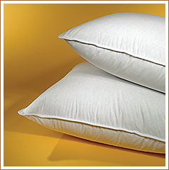 Pacific Coast ® Touch of Down Queen Pillow- Found in Many Hampton Inn Hotel Properties