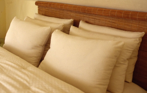 Pacific Coast ® Double Down Surround ® Queen Pillow as featured at many Ritz Carlson ® Hotels