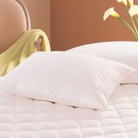 Pacific Coast® Double Down Surround Jumbo Pillow- Previously Found in Many Ritz Carlton Hotels (2 Jumbo Pillows)