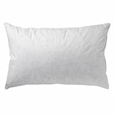 Pacific Coast ® Touch of Down Standard Pillow- Found in Many Wyndham Hotels (2 Standard Pillows)