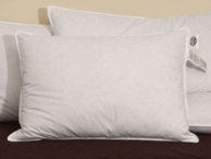 Pacific Coast ® Double Down Surround Pillow Featured in many Hyatt ® Hotels