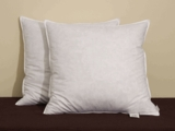Pacific Coast ® Euro Square Feather Pillow