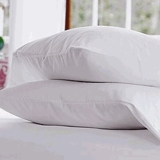 Pacific Coast ® Touch of Down Standard Pillow- Featured in Many Fairfield Inn and Suites