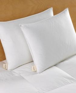 Pacific Coast ® Touch of Down Queen Pillow- Featured in Bally's Hotel and Casino (2 Queen Pillows)