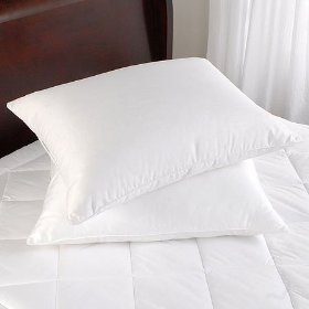Pacific Coast ® Touch Of Down Pillow- Standard Size- (2 Pillows included)