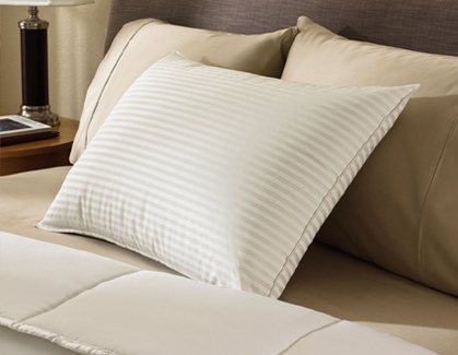 Pillow Factory ® Comforel ® Pillows-Previously Featured in Many Sheraton ® Hotels (4 Standard Pillows)