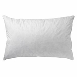 The National Sleep Products/ Restful Nights Trillium Gel Standard Pillow- Featured at Excalibur Las Vegas (2 Standard Pillows)