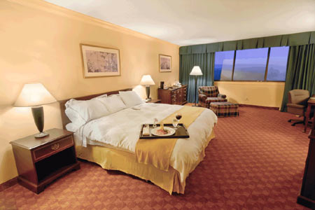 Pacific Coast ® Down Surround King Pillow- Featured in Many Radisson Hotels