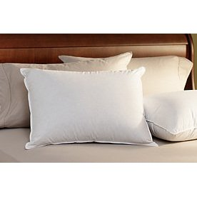 Pacific Coast ® Down Surround Standard Pillow- Featured in Many Radisson Hotels (4 Standard Pillows)
