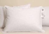 Pacific Coast ® Touch Of Down ® Featured At The Marriott ® Pillow set (2 Standard Size Pillows)