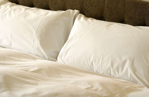 The National Sleep Products/ Restful Nights Trillium Gel Queen Pillow- Featured at the Treasure Island Hotel and Casino (2 Queen Pillows)