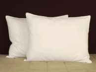 Holiday Inn ® Pillows