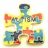 Autism Puzzle Magnetic Pin