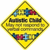 Autistic Child Emergency Decal