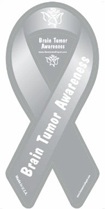 "Brain Tumor Awareness 2 in 1 Magnet 4"" x 8"""