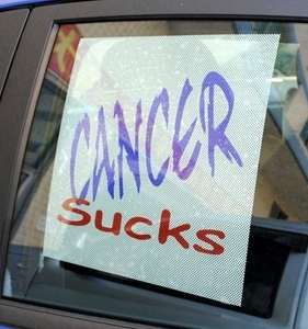 Cancer Sucks Sunshade Static Decal