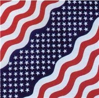 Headwear Bandanna Waving USA
