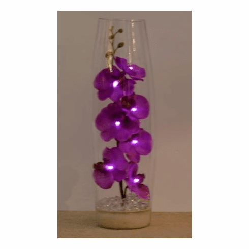 Lighted Orchid Memory Lamp