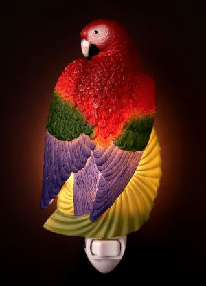 Macaw Parrot Night Light