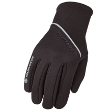 Winter Glove