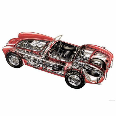 Ac Cobra Cutaway 11Inx17In Mini Poster