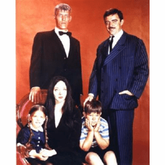 Addams Family, The Poster 24inx36in