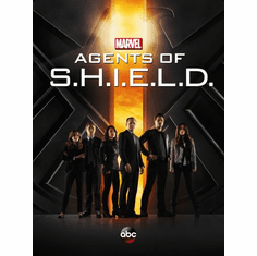 Agents Of Shield Poster 24inx36in Poster
