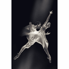 American Ballet Poster 24in x36in