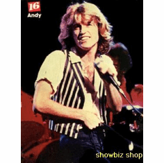 Andy Gibb Poster Vintage 80'S Image 24inx36in