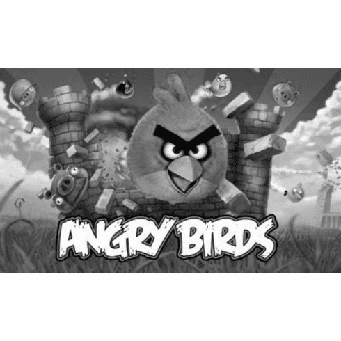 "Angry Birds Black and White Poster 24""x36"""