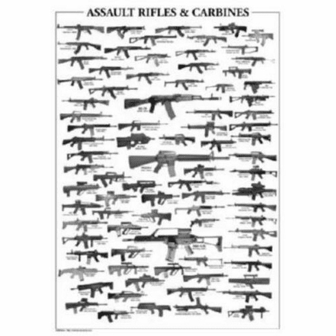 """Assault Rifles Black and White Poster 24""""x36"""""""