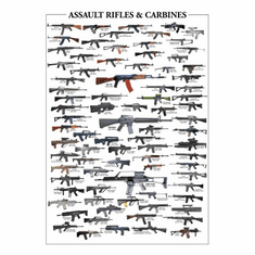 Assault Rifles Poster 24inx36in