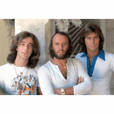 Bee Gees Poster 24inx36in