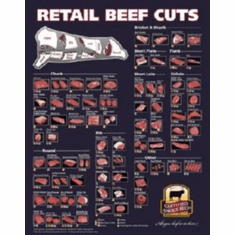 Beef Cuts Of Meat Butcher Chart 8x10 photo Master Print #01 Angus Beef