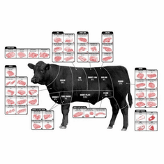 Beef Cuts Of Meat Butcher Chart cattle diagram 8x10 photo