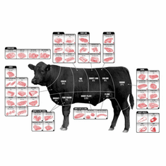 Beef Cuts Of Meat Butcher Chart Cattle Diagram Poster 24inx36in Poster