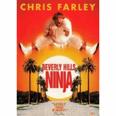 Beverly Hills Ninja Mini Movie  8x10 photo master print