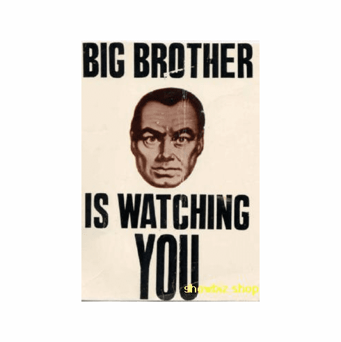 Big Brother Is Watching You Poster 24inx36in