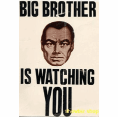 Big Brother Watching #01 8x10 photo master print