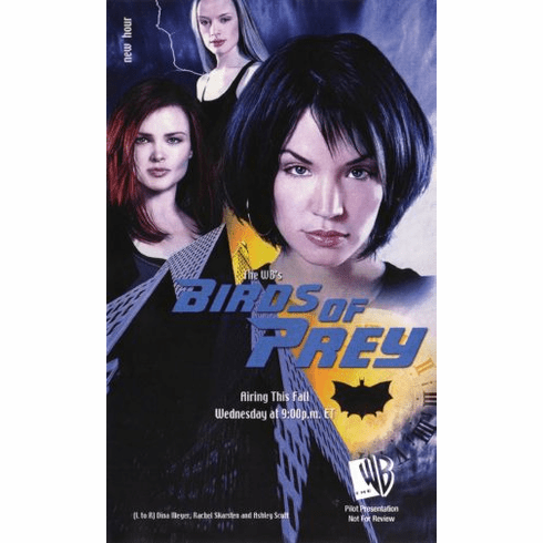 Birds Of Prey 11inx17in Mini Poster