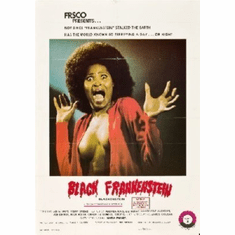 Black Frankenstein Mini Movie  8x10 photo master print