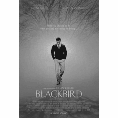 "Blackbird Black and White Poster 24""x36"""