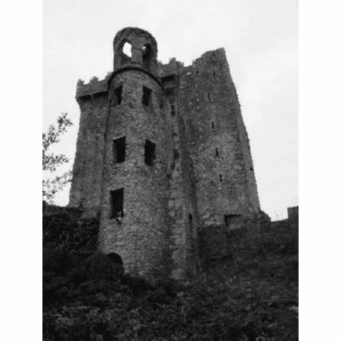 """Blarney Castle Black and White Poster 24""""x36"""""""