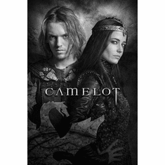 """Camelot Black and White Poster 24""""x36"""""""