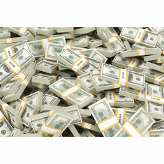 Cash Stacks Money Bundles Poster 24Inx36In Poster