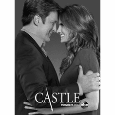 """Castle Black and White Poster 24""""x36"""""""