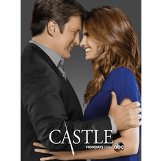 Castle poster 24inx36in Poster