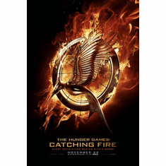 Catching Fire Movie Poster 24inx36in Poster