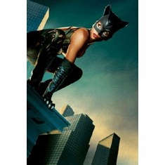 Catwoman Halle Berry Movie Poster 24inx36in